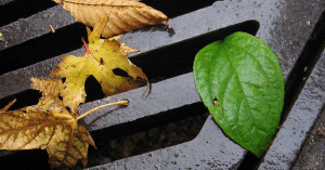 Fletcher's Plumbing & Contracting, Inc. offers Fall Plumbing Tips